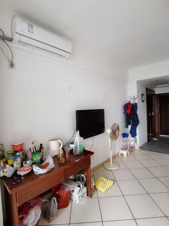世嘉海景公寓  43.51平米  1房  海景房  同等小区性价比最高